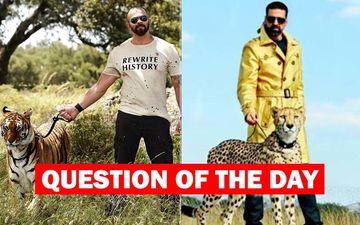 Who Is A Better Host For Khatron Ke Khiladi- The Current Rohit Shetty Or The Former Akshay Kumar?