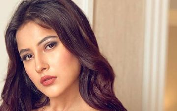 Bigg Boss 13's Shehnaaz Gill's Latest Picture Is Beauty Personified; Punjab Ki Katrina Is Living Up To Her Nickname - Take A Look