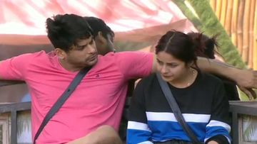 Bigg Boss 13: Siddharth Shukla And Shehnaaz Gill Doze Off Holding Hands; Gill Gives An Explanation To Paras Chhabra