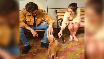 Pati, Patni, Woh Aur Doggie – Kartik Aaryan And Ananya Panday Playing With A Stray Puppy On Sets Is Adorbs