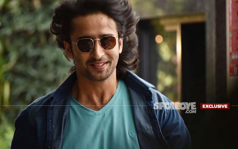 Shaheer Sheikh: I Don't Mind Playing A Negative Role'- EXCLUSIVE