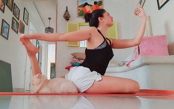 FIR Actress Kavita Kaushik Pulls Off A Well-Balanced Yoga Asana; Pet Jaggu Steals The Show