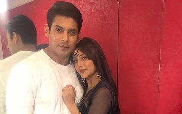 Sidharth Shukla And Shehnaaz Gill's Fans Demand First Look Of Their New Project; Trend #ShonaShonaAtFirstGlance At Number 1 Position On Twitter