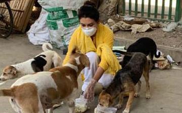 COVID-19: Robibaar Actress Jaya Ahsan Feeds Stray Dogs In Dhaka