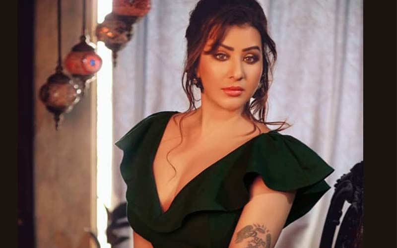 Did Shilpa Shinde Confirm Her Exit From Gangs Of Filmistan? Wishes Rest Of The Team As The Show Debuts