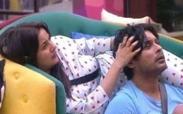 Sidharth Shukla-Shehnaaz Gill Recreate Head Massage Scenes From Bigg Boss 13; Duo Drops Interesting Video Of 'SidnaazKiChampi'