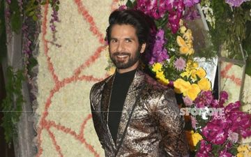 Shahid Kapoor Says 'No': 6 Films Actor Rejected