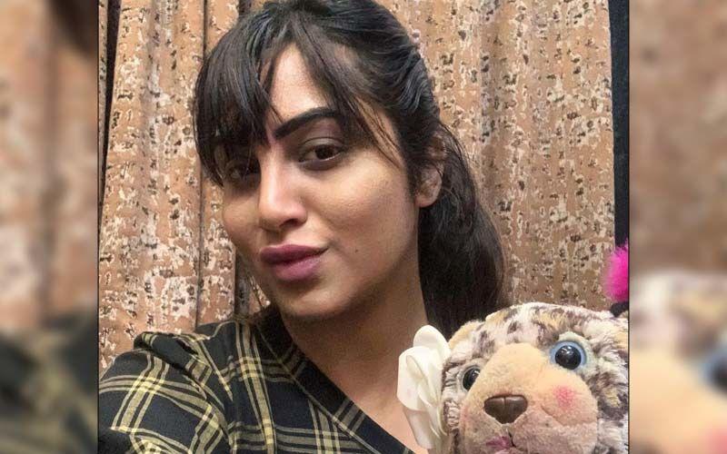 Bigg Boss 14's Arshi Khan 'Doesn't Care' About The Controversies Revolving Around Her Life, 'Mujhe Farak Nahi Padta'
