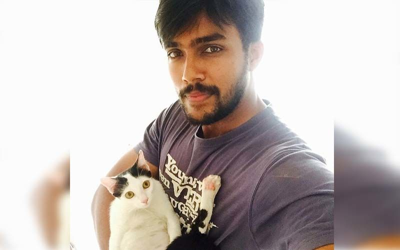Bigg Boss Tamil Season 1 Winner Arav Nafeez Cares For Stray Dogs