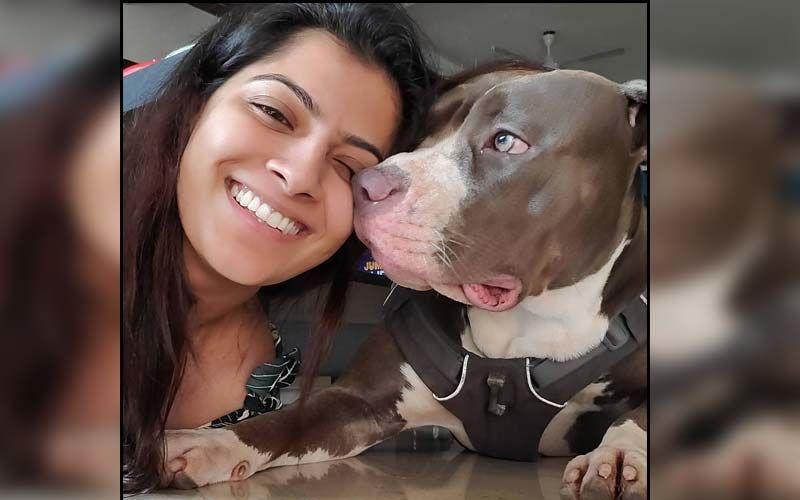 Varalaxmi Sarathkumar Introduces Her Pets To Her Insta-fam