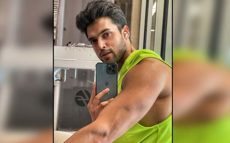 Parth Samthaan is Enjoying 'An Ideal' New York Sunset With Someone Special; Drops Cryptic New Video