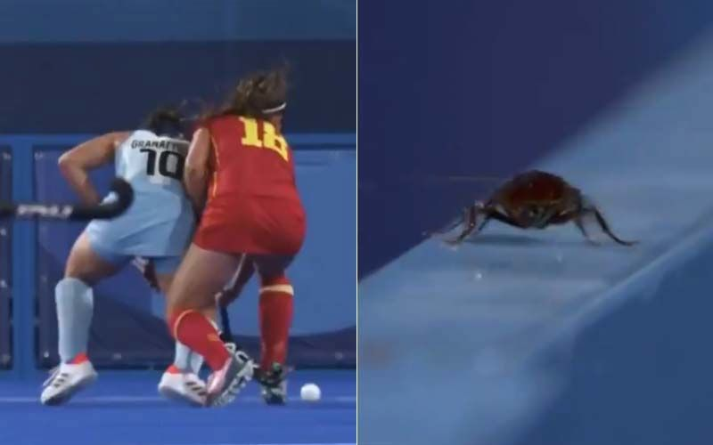Tokyo Olympics Cameraman Films Cockroach Instead Of Spain-Argentina Hockey Match, Twitter Fans In Splits Over This Hilarious PICTURE