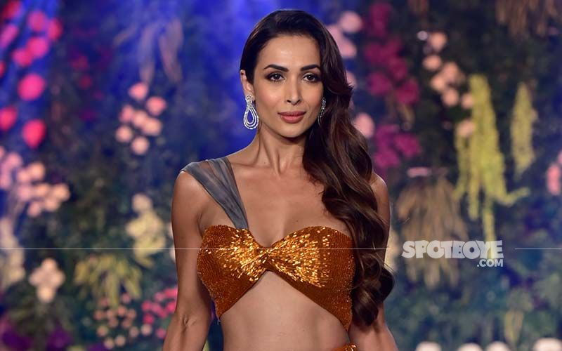 Malaika Arora Looks Like An Absolute Queen In This Gorgeous And Super Shiny Multicoloured Pleated Metallic Gown