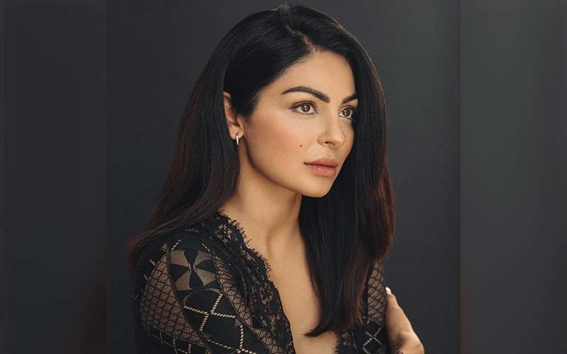 Neeru Bajwa's Recent Reel On 'Jalebi Baby' Is Taking Over The Internet; Actress Shares A Reel On Instagram