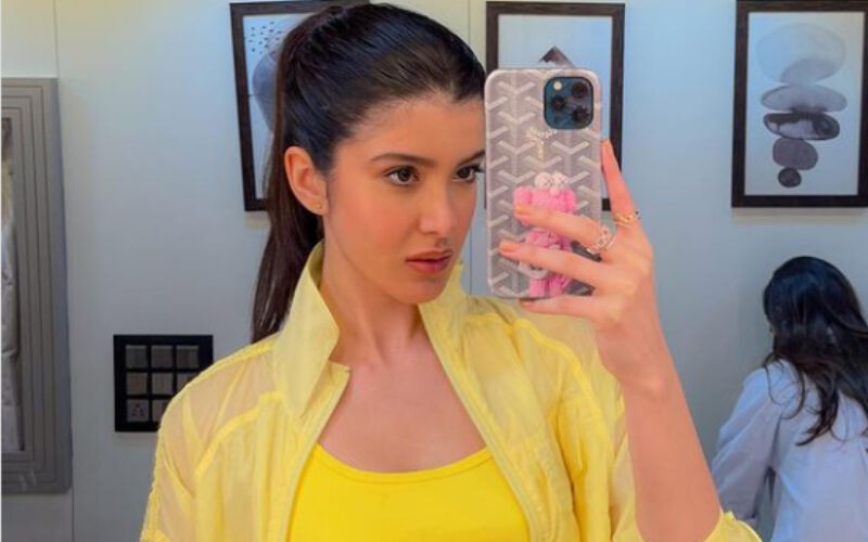 Shanaya Kapoor Looks At The 'Bright Side Of Life' In Yellow Athleisure Outfit; Check Out The Sexy Mirror Selfies