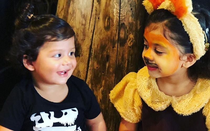 Mira Rajput Shares 'Raaaar VS Roar' Pictures Of Children Misha Kapoor And Zain Kapoor