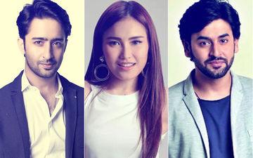 What's Shashank Vyas Doing With Shaheer Sheikh's Ex-Girlfriend Ayu Ting Ting?