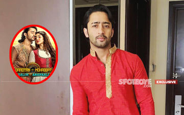 Shaheer Sheikh Finally REACTS On Dastaan-E-Mohabbat Salim Anarkali's Abrupt Ending