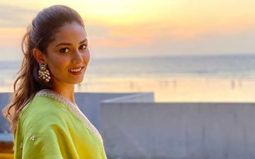 Shahid Kapoor's Wifey Mira Rajput To Soon Make Her Bollywood Debut? Here's What The Lady Has To Say