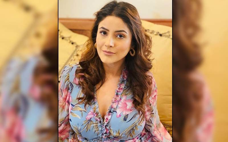 Shehnaaz Gill Looks Magnificent In A Floral Dress; Former Bigg Boss 13 Contestant's Beauty Will Leave You Spellbound