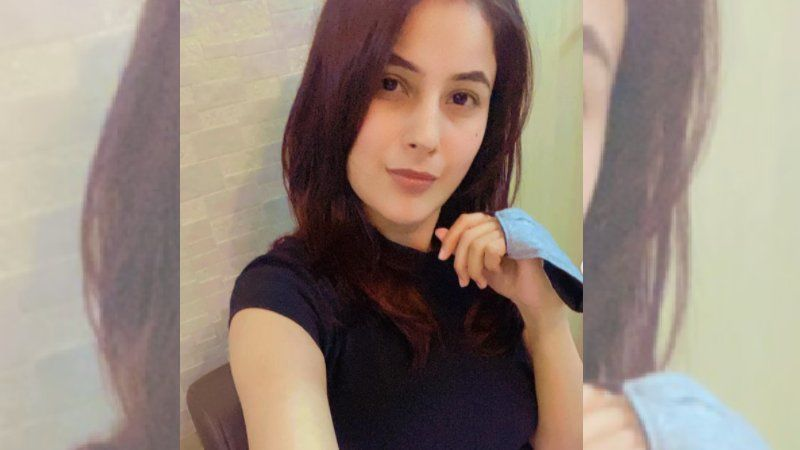 Shehnaaz Gill Gives Full On Punjabi Vibes As She Sports A Turban Looking Like A Cute Sardarji; Oye Hoye Tussi Cha Gaye - PICS INSIDE