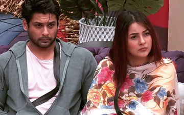 Bigg Boss 13 POLL: Will Shehnaaz Gill's Game Fall Flat Without Sidharth Shukla's Support? Fans DON'T Feel So