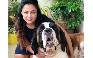 National Dog Day 2019: Pooja Sawant And Prarthana Behere Share Their 'Pawfect' Moments With Fans