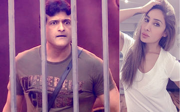 """Put Armaan Kohli In Jail,"" Demands Bigg Boss 7 Co-Contestant Sofia Hayat"