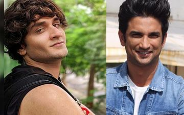 Vikas Guppta Hails Centre's Decision Of CBI Inquiry In Sushant Singh Rajput's Death Case; Thanks Supporters Who Demanded Justice