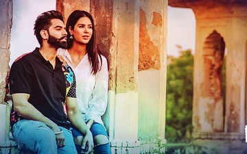 Jinde Meriye New Poster Starring Sonam Bajwa, Parmish Verma Released