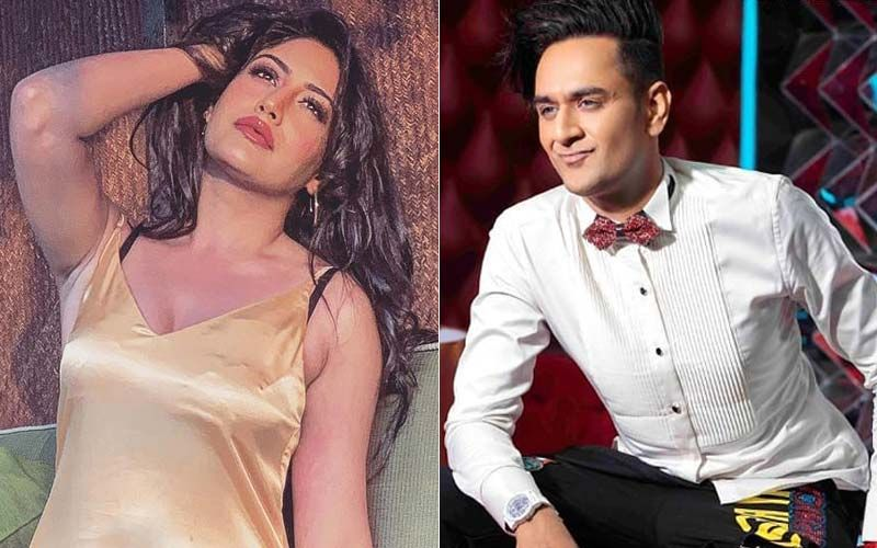 "Surbhi Chandna-Vikas Gupta's ""Long Due"" Dinner Date Was Not At All About Food!"