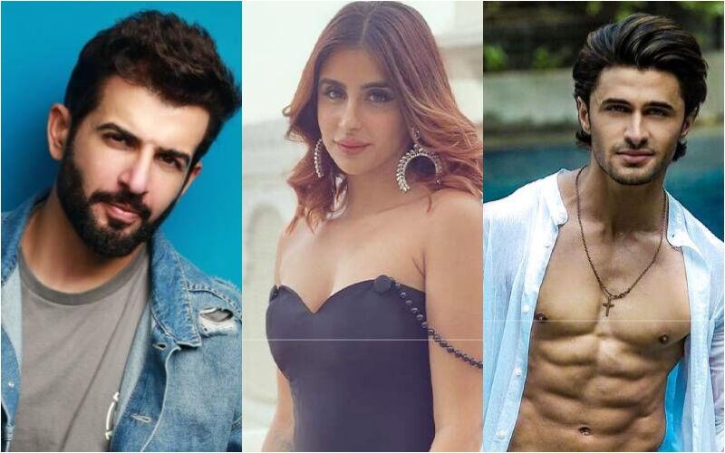 Bigg Boss 15: Jay Bhanushali Says 'Ieshaan Sehgaal-Miesha Iyer Don't Even Need A Blanket Anymore'; Afsana Khan Calls Their Romance 'Fake'