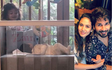 Shahid Kapoor-Mira Rajput's Son, Zain Looking Adorably At Sister Misha Is Not Worth A Miss