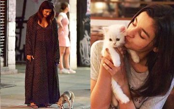 World Animal Day 2019: From Priyanka Chopra's Diana To Anushka Sharma's Dude, Here Are 10 Celebs With Their Super Adorable Pets