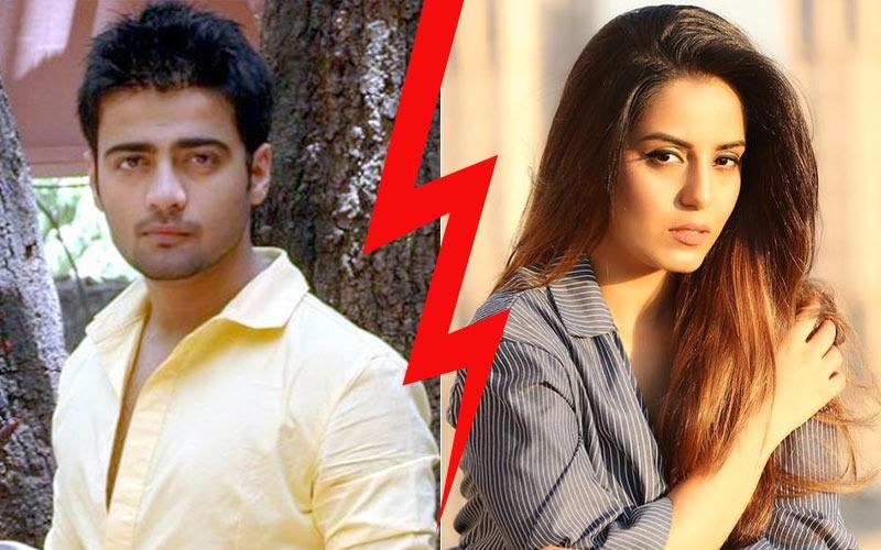 "Manish Naggdev Bursts Out: ""Srishty Rode Manipulated Me, Used Me For Professional Gains"""