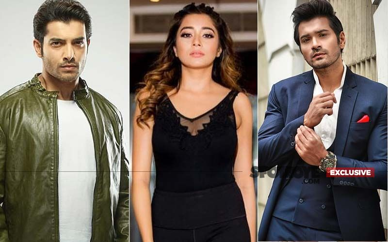 Article 370 Revoked In Jammu & Kashmir: Ssharad Malhotra, Tinaa Dattaa And Other TV Celebs Express Their Opinion: EXCLUSIVE