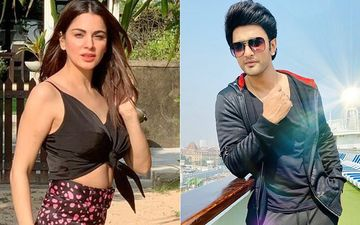 Countdown 2020: TV Celebs Shraddha Arya, Nishant Singh Malkani And More Reveal Their Exciting New Year's Eve Plan