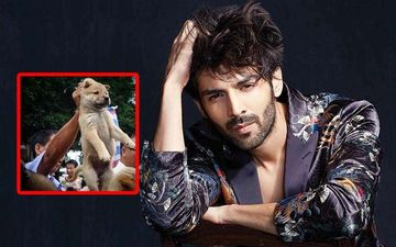 China Kickstarts Annual Dog-Meat Eating Festival Amid Coronavirus Pandemic; Kartik Aaryan Is Disgusted, 'Har Saal Dil Todte Hain'