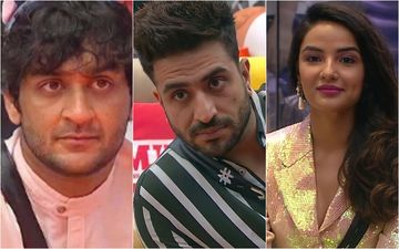 Bigg Boss 14: Jasmin Bhasin Clarifies About Aly Goni's 'Pavitra Bhabhi' Comment After Vikas Gupta Says 'Being Called A Woman Is Derogatory To These Idiots'