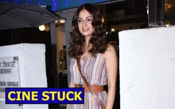 Cine Stuck: The Pristine And Goodhearted Dia Mirza Marries Vaibhav Rekhi; She Deserves All The Happiness And More