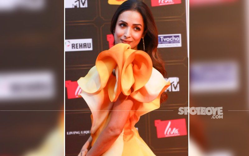 Malaika Arora Gives A Peek Into Her Lavish House During The Magic Hour- See Pic