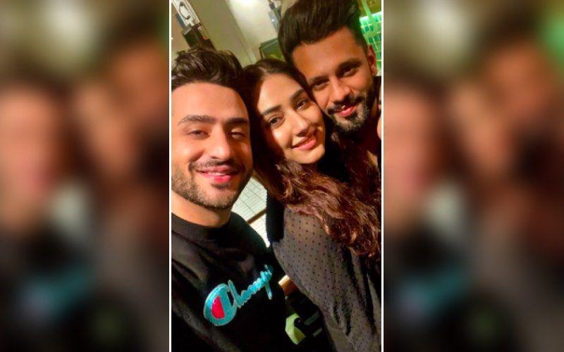 Rahul Vaidya-Disha Parmar Wedding: Bestie Aly Goni Takes The 'Best Man' Duties Seriously As He Guards Groom's Shoes; Says 'Joote Chori Hone Nahi Denge'- Video