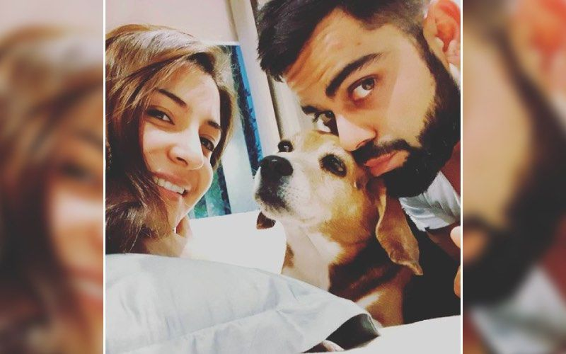 Anushka Sharma's House Is Filled With Flower Bouquets; Looks Like It's Pouring Wishes For Anushka And Virat Kohli On Their Wedding Anniversary
