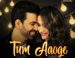 आमिर अली और संजीदा शेख फिर करेंगे म्यूजिक वीडियो में काम