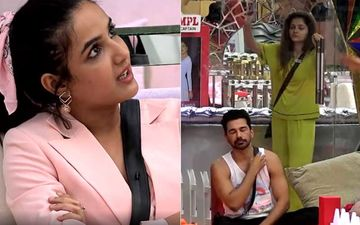 Bigg Boss 14: After Rubina Dilaik And Jasmin Bhasin's Fight, Abhinav Shukla Lashes Out At His Wife, Says She 'Doesn't Have Brain Of Her Own'- WATCH