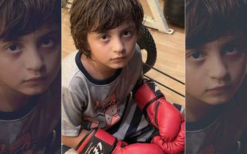 Gauri Khan Calls Her Boxer Son AbRam Khan, 'My Mike Tyson'; Shares His Photo As He Gazes Into The Camera With Boxing Gloves On