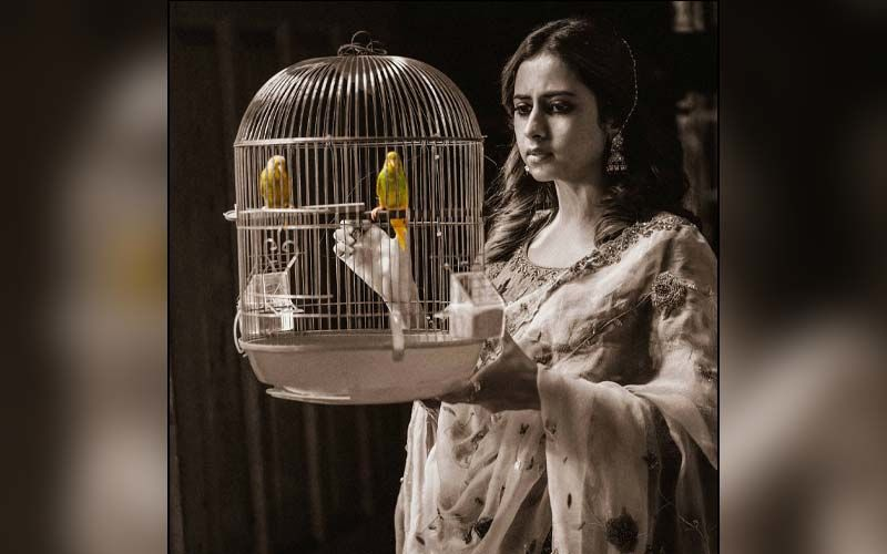 Sargun Mehta Shares Another Beautiful Pic From Her Upcoming Song Titliaan