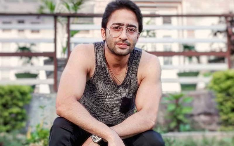 Shaheer Sheikh On Embracing Fatherhood: 'I Always Wanted A Girl, It has been My Dream To Be A Dad'