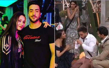 Bigg Boss 14: Aly Goni's Sister Ilham On His Asthma Attack After Jasmin Bhasin's Eviction, 'He Gets Anxiety Attack When He Hears Bad News'