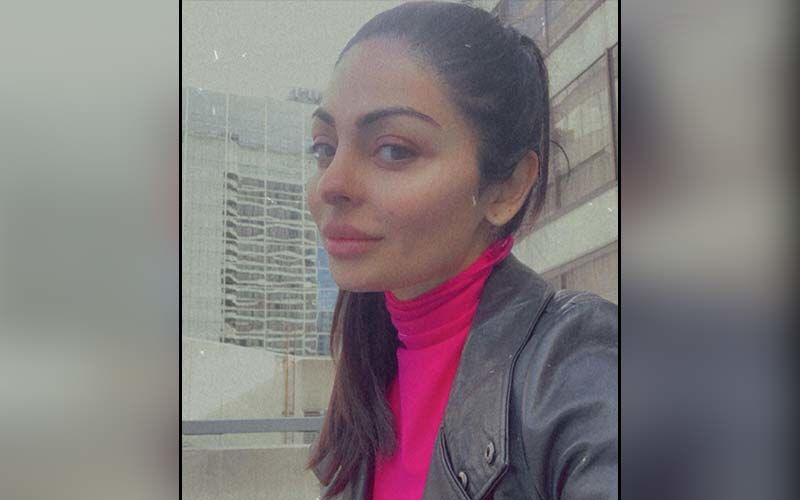 Neeru Bajwa Turns Water Baby During Snowfall In Her Latest Insta Story; Don't Miss This Picture
